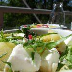 Kartoffelsalat mit Radieschen, Löwenzahn und Feta